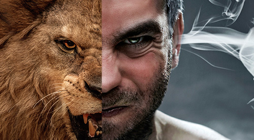 A face collage combing half face of a lion and an angry man.